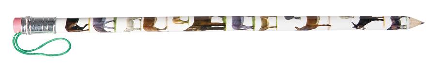 AC0539 crayon âne géant