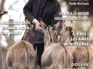 Les Cahiers de l'âne 21