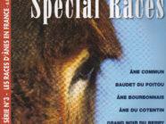 Les différentes races d'ânes