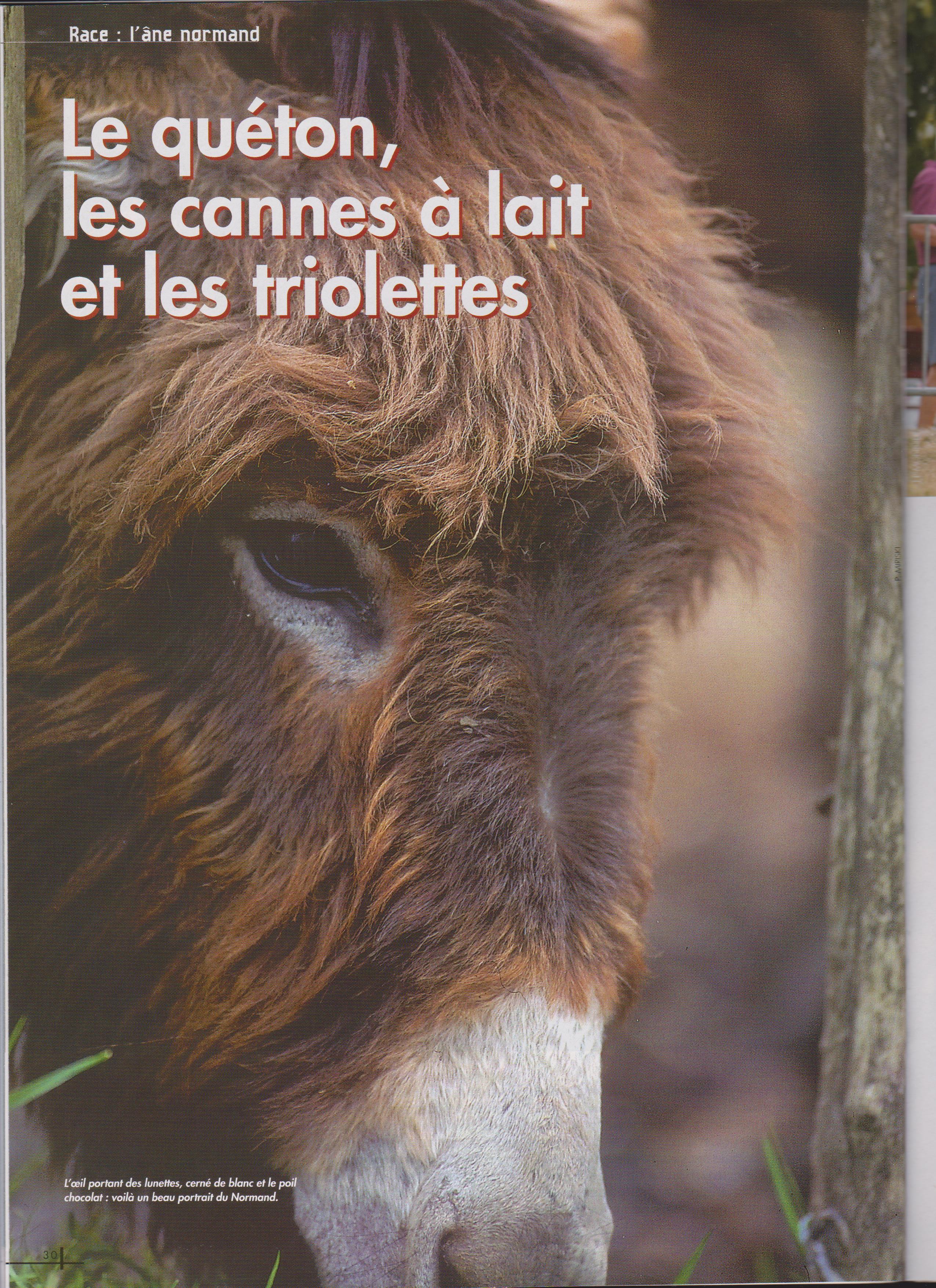 Cahiers ane 3a