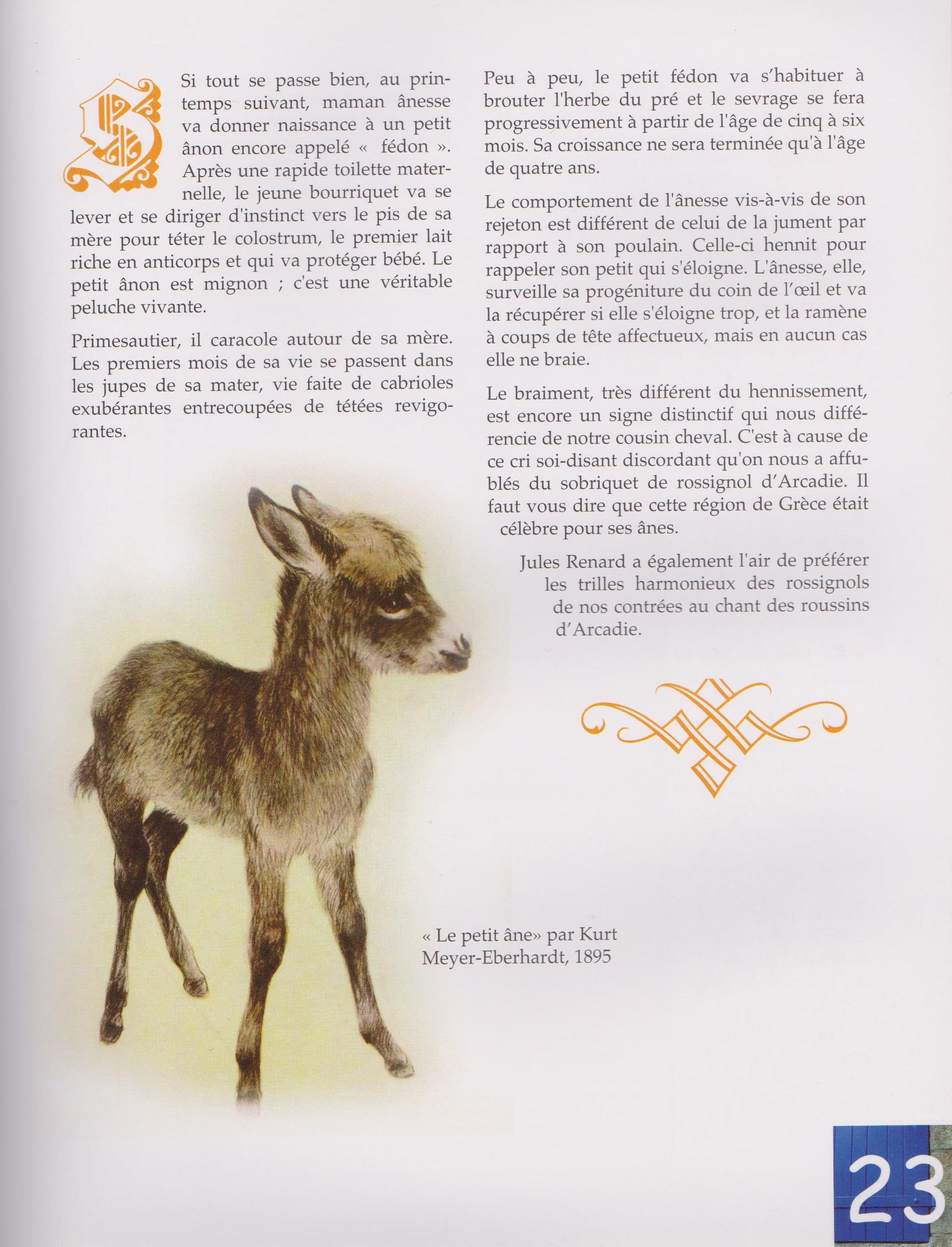 Livre Ane Bougres d'ânes2